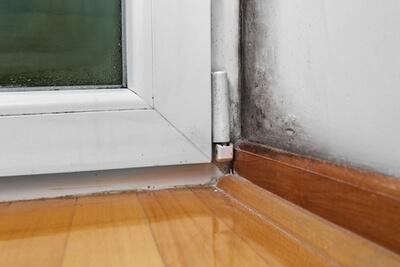 Livre-se da umidade da casa: 10 dicas infalíveis para acabar com isso