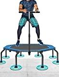 50 'trampolim fitness max.quiet installation ...