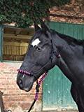 Tiara de malha para cavalos - acolchoada no nariz e no pescoço - ideal ...