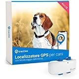 Rastreador de cães GPS de tração (2021). Você sempre sabe onde seu cachorro está. Atividades ...