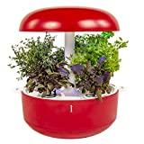 PLANTUI SG6-R Smart Garden, Rosso, 29 x 29 x 37 cm
