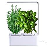 SMART VASE- Smart Garden - estufa hidropônica para plantas, Smart Pot, cultivo ...