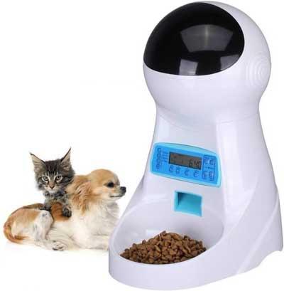 Distribuidor crocante para cães e gatos: os melhores modelos