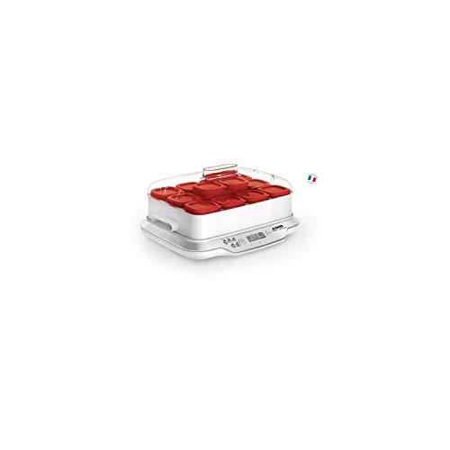 Seb Multidélices Express Yogurt Maker 12 potes vermelhos Iogurte caseiro 5 programas automáticos Sobremesas com leite Queijo branco Sobremesas moles Frascos 140ml 100% sem BPA YG661500